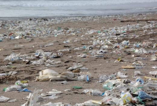 plastic litter ocean